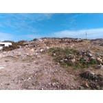 Stunning Plot of Low Density Zoned Land For Sale in Galway Ireland