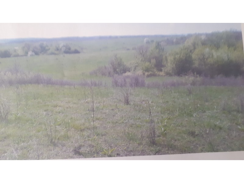 Superb Agricultural Land in Rakevo Bulgaria