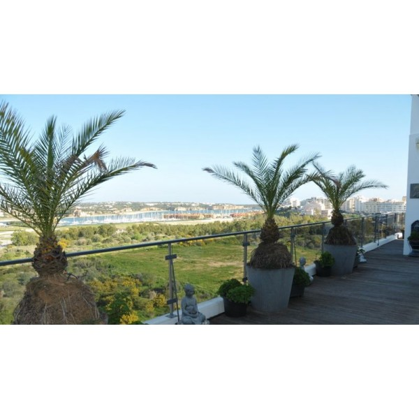 6 Bedroom Penthouse With Seaviews - Portimao Marina
