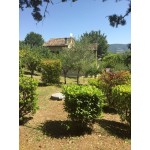 Superb Three Bed House and Land Pesaro e Urbino Fermignano Italy