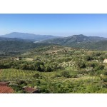 Superb 3 Bedroom House in Monteforte Cilento Italy