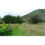 Superb Plot of land in Aitolokarnania Greece