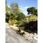 Superb 3 Bed Bungalow in Alicante Province Spain