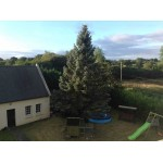 Superb House with Land in Finistere Brittany France
