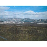 2 Superb plots of land in Bulgaria