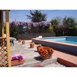 4 Independent Apartments in Latina Lazio Italy