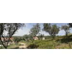 Great Plot of Land in Anceriz Arganil Portugal