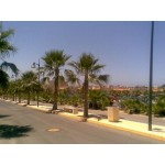 1 Bedroom Almerimar Apartment in Almeria Spain