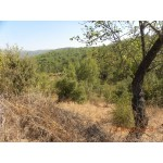 Plots of Land in Mugla Turkey