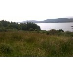 Plot of land in West Cork Ireland