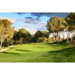 Land For Sale In Campoamor Spsnb0984