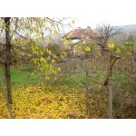 House for sale in Bozhuritsa, Pleven