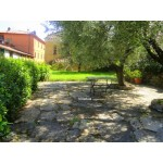 Village/Town House - just 5 km north of Lucca