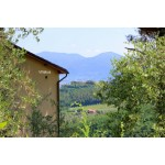 Villa - 12 minutes drive to Lucca