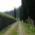 Commercial/Business - begining of Serchio Valley